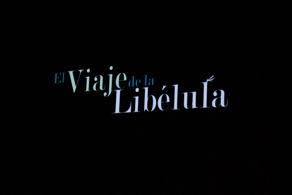 Cortometraje Ganador, categoría Audiovisual.
